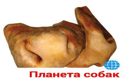 Губы, носы говяжьи опаленные