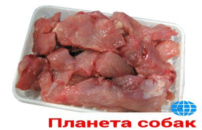 Мясо индейки рубленое
